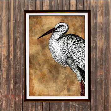 Stork poster Animal art Rustic decor Bird print SH2