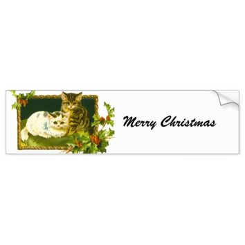 Christmas Kittens Bumper Sticker