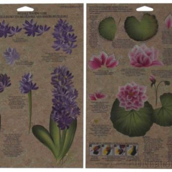 Lot 36 FolkArt One Stroke Reusable Paint Teaching Guide Hyacinth Water Lily 1024