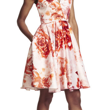 Satin Floral Printed Fit and Flare Dress - Adrianna Papell