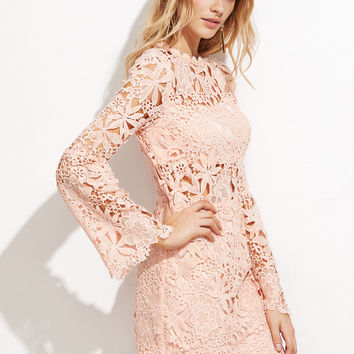 Hollow Out Embroidered Lace Overlay Dress