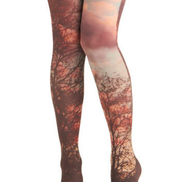 Tights, Cute Tights, Retro Tights & Vintage-Style Tights | ModCloth