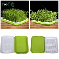 Useful Hydroponics Basket Nursery Tray Seed Nursery Pot Flower Plant Seed Germination Tray Grow Box Vegetable Seeding Tray Case