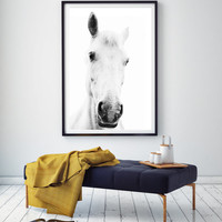 White horse portrait photography,Horse Art,black and white,horse photography wall art,white horse art,horse print,white horse photo