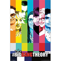 The Big Bang Theory Signal Poster