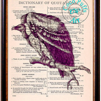 Condor Drawing Art Beautifully Upcycled Vintage Dictionary Page Book Art Print, South America Bird Art Print