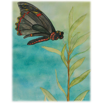 Black Butterfly 2 – Print of an original watercolor painting