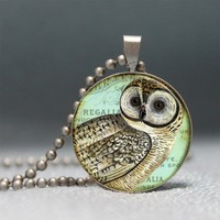 Vintage Owl Collage Domed Resin Pendant by artyscapes