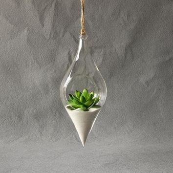 Hanging Glass Vase Hanging Terrarium Hydroponic Plant Flower Clear Container Indoor Hanging Vase Home Decor