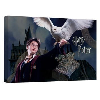 Harry Potter - Harry And Hedwig Canvas Wall Art With Back Board