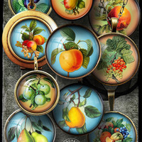 "Digital Collage Sheets, Vintage Fruits - 1.5in, 1.25"", 30mm, 1in, 25mm circles - Jewelry Making, Cabochons, Pendants, Bottle Caps - CG-274a"