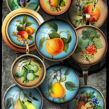 """Digital Collage Sheets, Vintage Fruits - 1.5in, 1.25"""", 30mm, 1in, 25mm circles - Jewelry Making, Cabochons, Pendants, Bottle Caps - CG-274a"""