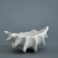 Micro Clam Porcelain Bowl / Dish in White by elementclaystudio