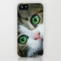 Kitty Cat iPhone Case by Alice Gosling | Society6