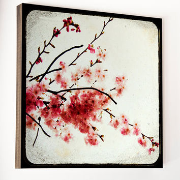 Cherry Blossom Photography: Wood Photo Block, Wall Art-   St James, 5x5 wood art, Feminine Decor, Blush pink, China red, Wood Home Decor