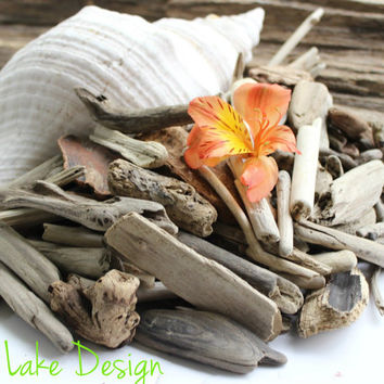 Natural Craft Supplies 100 Pieces of Small Driftwood for Home Decor, Beach Wedding and Coastal Design DS1