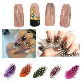 Feather Nail Art Water Transfer Decals Sticker