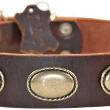 Dean & Tyler Retro Rulz Dog Collar with Oval Hardware and Brass Buckle, 24 by 1-1/2-Inch, Brown
