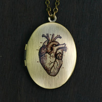 Anatomical Heart Locket Necklace