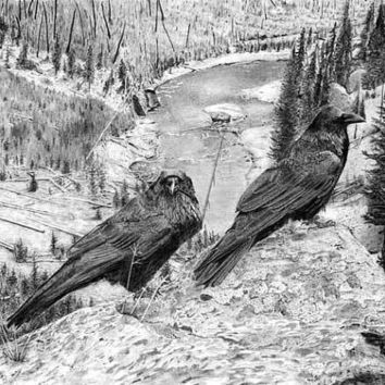 Raven's View-Limited Edition Print. Archival Quality.