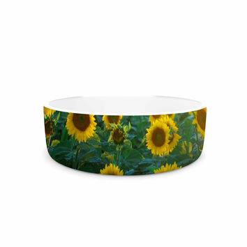 "Chelsea Victoria ""Sunflower Fields"" Floral Photography Pet Bowl"