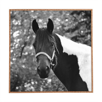 Allyson Johnson Horse Portrait Framed Wall Art