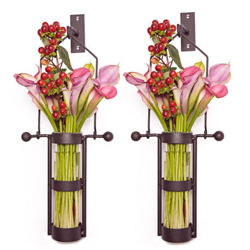 Wall Mount Hanging Glass Cylinder Vase Set with Metal Cradle and Hook by Danya B