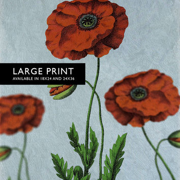 Poppy decor art Flower botanical Poppy print kitchen decor Floral Poppy print wall decor floral wall art Large Giclee Cotton Canvas & Satin