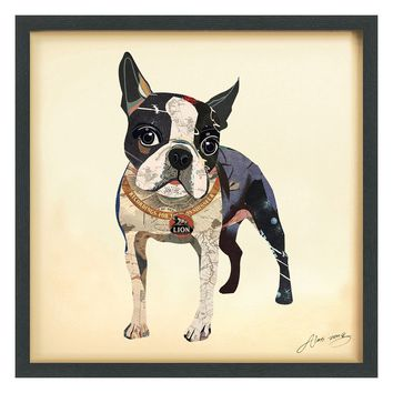 Boston Terrier II ~ Art Collage