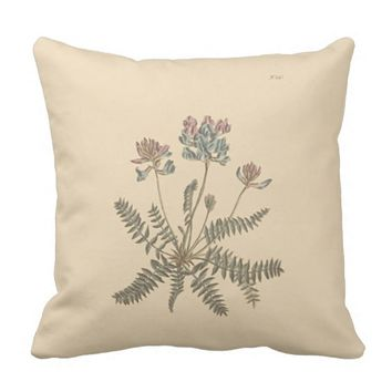Mountain Milkvetch Botanical Illustration Throw Pillow