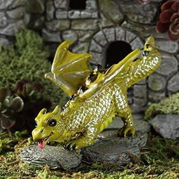 Georgetown Fiddlehead Fairy Garden Fetching Dragon