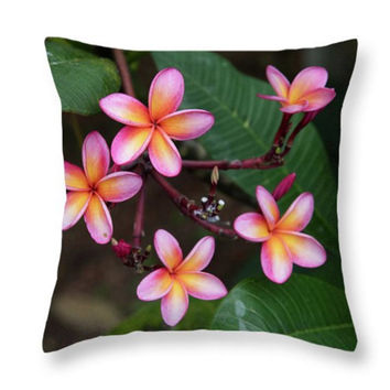 Beautiful Nature Pink Plumeria Flower Throw Pillow, Accent Pink Green Flowers Pillow, Seat Cushion Plumeria Flowers Floral Photo Art