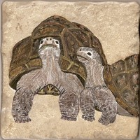 Tortoises Hand Painted Tile Art