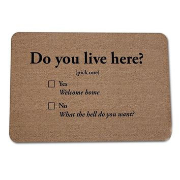 """""""Do you Live Here?"""" Yes, Welcome Home. No, What The Hell Do You Want Floor Carpet Door Mat"""