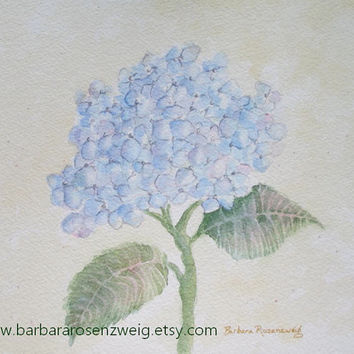 Blue Hydrangea Art Print, Hydrangea Painting, Flower Watercolor Art, Shabby Chic Art, Barbara Rosenzweig, Home Decor Garden Gift for Her