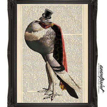 Pompous Lord Birdie Original Collage Artwork Print on an Unframed Upcycled Bookpage