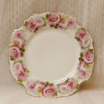 Antique 1900s Hermann Ohme Silesia Eglantine Collector Plate
