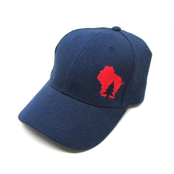 Wisconsin Hat - Navy Hemp Snapback  - pine tree in wisconsin red state