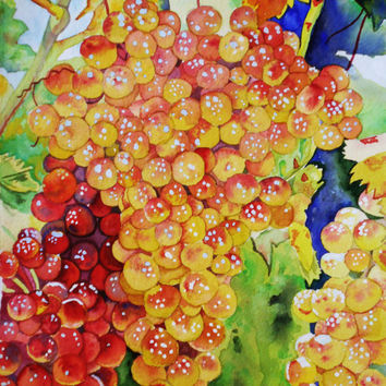 Water Color : Original Grapevine Watercolor Painting. Grape painting. Still life fruit. Fruit painting. Grape wall art. Grape picture.
