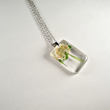 White Clover (Trifolium repens) Botanical Jewelry, Botany Pendant, Preserved Specimen Biology Necklace