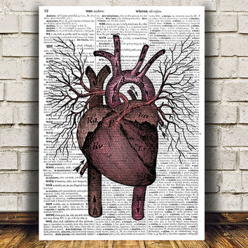 Heart anatomy print Gothic decor Medical poster Macabre print RTA867