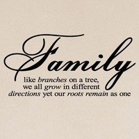 Family Like Branches On A Tree... vinyl lettering wall sayings home decor quote art   12.5x26