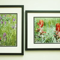 Wall Decor Set of 2 Wildflowers Photos, Purple, Red, 8x10 Prints, Unique Art, Shabby Chic, Bright Colors, Affordable Home Decor