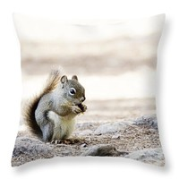 """Ground Squirrel Throw Pillow for Sale by Ivy Ho - 16"""" x 16"""""""