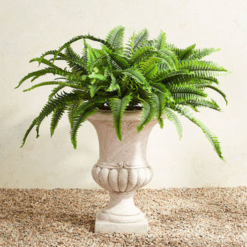 Outdoor Faux Mixed Fern in Urn