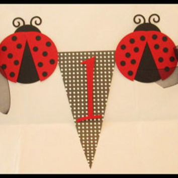 Ladybug Birthday Highchair Banner