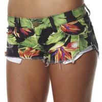 SurfStitch - Search Results for Shorts