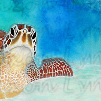"FREE SHIPPING - Limited Edition Sea Turtle Print - 8""x10"""