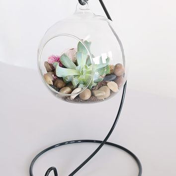 """Small Hanging Glass Orb Terrarium with Metal Stand - 10"""" Tall x 6"""" Wide"""