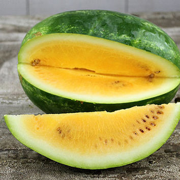 8 Yellow Watermelon Seeds | Citrullus Lanatus | Bush Wild Home Gardening Plant Decor  Heirloom Organic non GMO Edible High Yield Fruit
